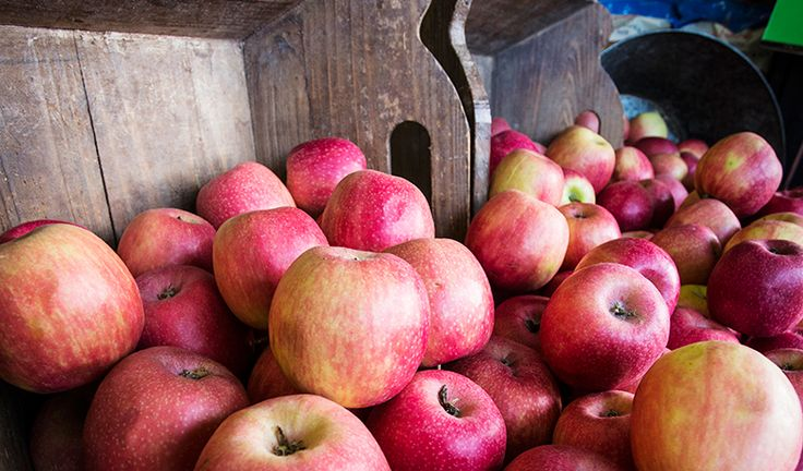 Crunchy and delicious unwaxed apples