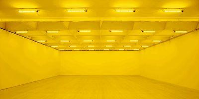 金沢21世紀美術館 | オラファー・エリアソン - あなたが出会うとき