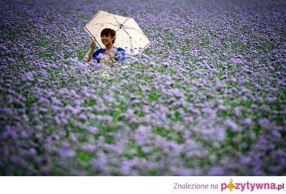 Morze kwiatów