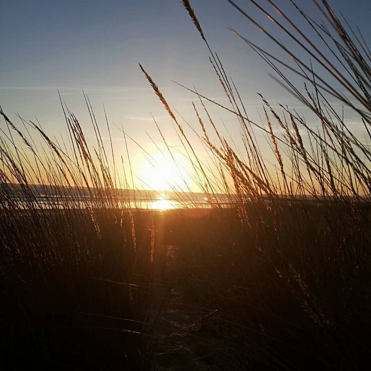pordosolportugal pordosolperfeito putdosol praiasdeportugal beach   – beach