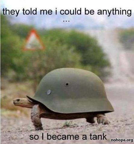 Turtle Tank Meme | Slapcaption.com