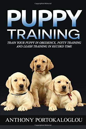 Download Pdf Puppy Training Train Your Puppy In Obedience Potty