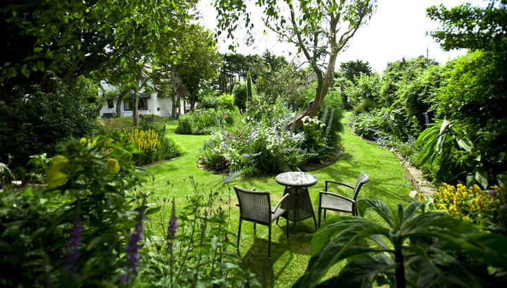 Liz's glorious organic flower gardens. Sit back, relax and enjoy the perfect seaside escape.