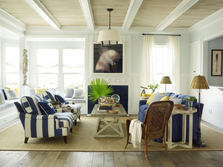 Navy Beachy Living Room With White Navy Furniture White