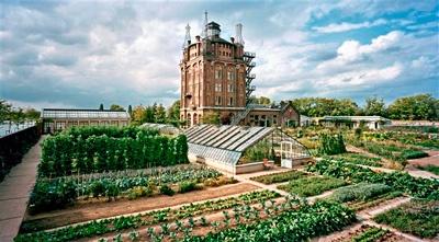 The kitchen garden at Villa Augustus, Dordrecht