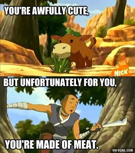 """""""If animals didn't want to get eaten, why are they made of meat?""""- Avatar the Last Airbender tv show"""