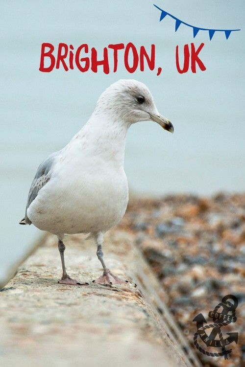 Brighton with annual Children's Parade, Brighton Fringe festival, March of the Mermaids and many, many more...