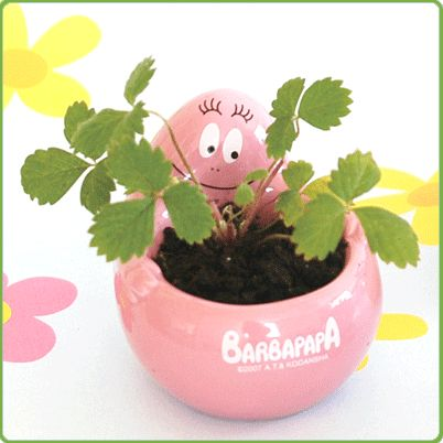 #Eggling crack & grow:  Barbagarden is a new line of growing gifts featuring the delightful Barbapapa characters. Barbapapa Grass Garden grows grass hair. Just water and within a few weeks a thick grass garden appears.