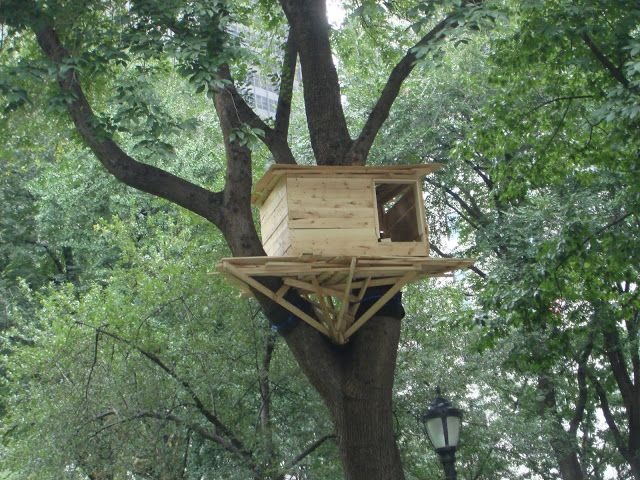 Simple Tree House Designs And Plans