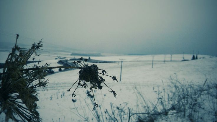 Winter / Slovakia /