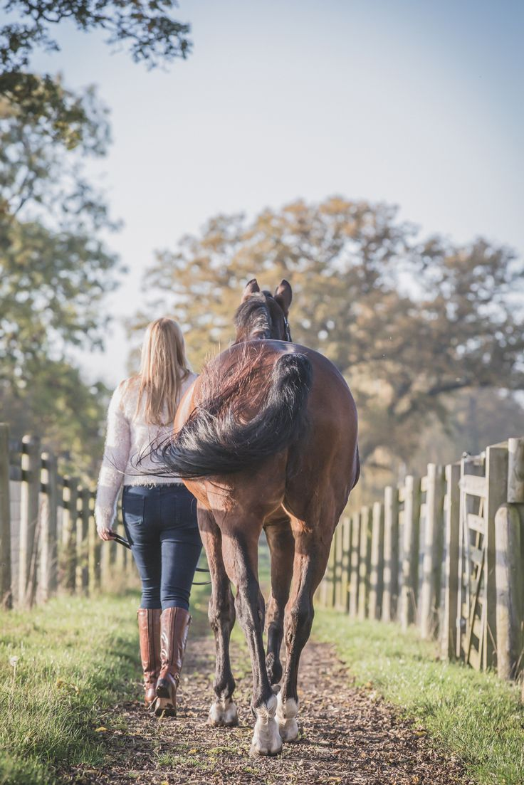 Photographer specialising in equine lifestyle portraits and lifestyle commercial photography. Capturing the love and connection between you and your horse.