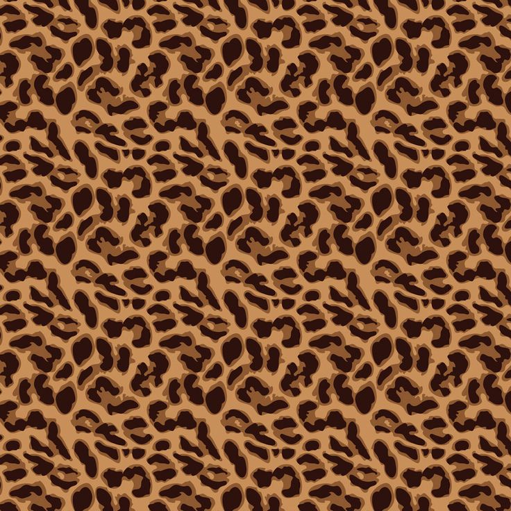 Leopard Print Iphone Wallpaper: 1000+ Images About Leopard On Pinterest