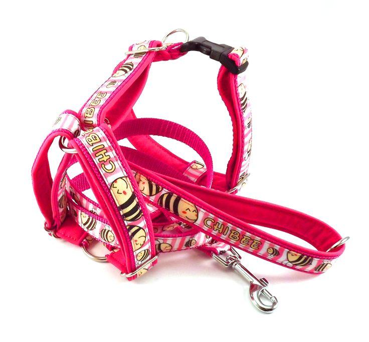 Bee leash and harness. #colorfundogs