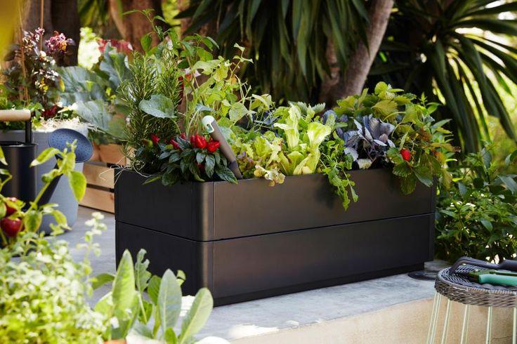 """An Grün darf es auf dem Balkon nicht fehlen. Im Blumenkasten """"Salladskal"""" finden gleich mehrere Pflanzen und Blumen Platz und machen die Stadt ein kleines bisschen bewachsener."""