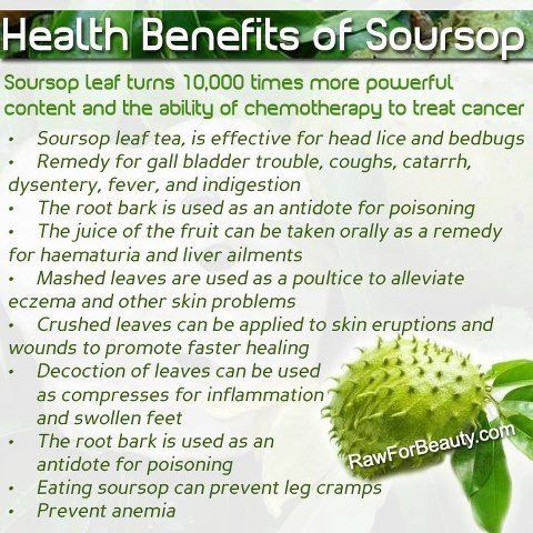 soursop fruit fruit sugar healthy
