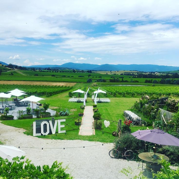 "129 Likes, 9 Comments - Acacia Ridge Winery (@acaciaridgewinery) on Instagram: ""Roof top view!! absolutely stunning day for a wedding 👫👩‍❤️‍👩👨‍❤️‍👨💍🍇🍷💞#rusticdecor #rusticwedding…"""