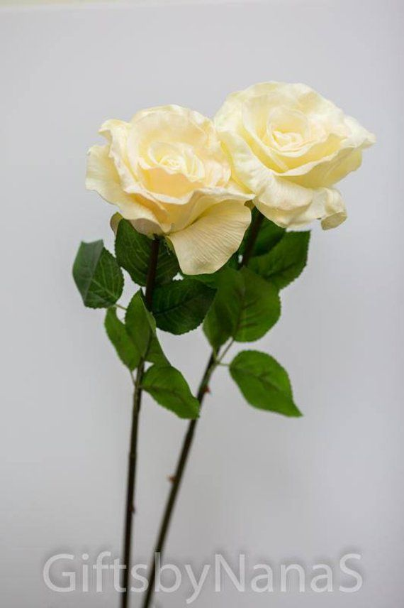 Blush Pink Ivory Roses Real Touch Flowers Real Touch Roses Diy
