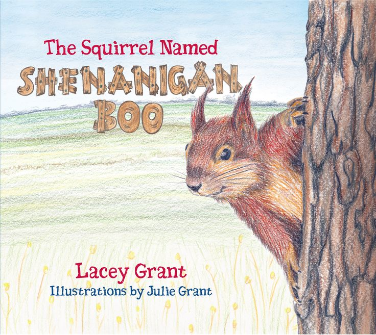 Shenanigan Boo is a comforting story about a squirrel who leaves his home to explore the world around him. Although he has unexpected encounters, he makes discoveries that show him the simple gifts exchanged between Man and Nature.