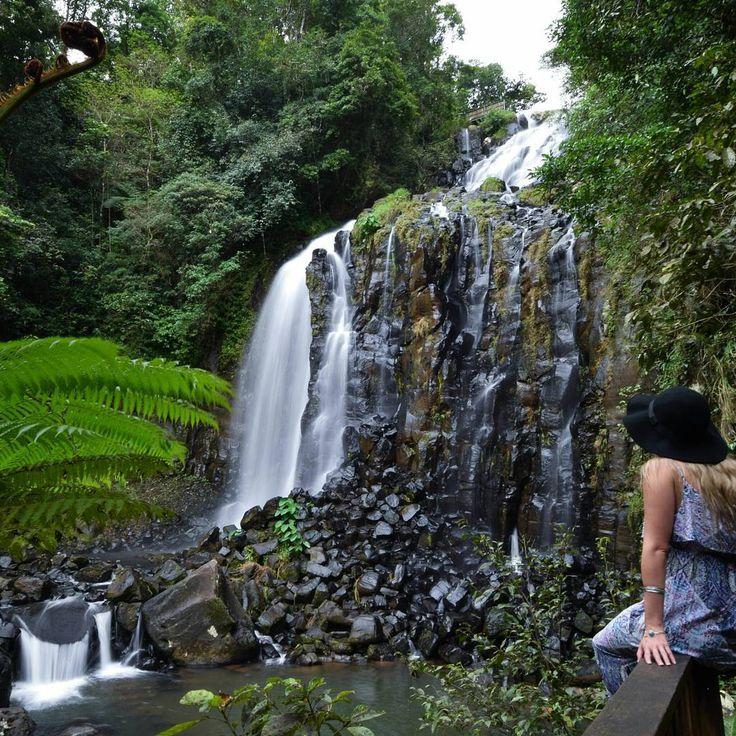 Mungalli Falls   Atherton Tablelands   Queensland   Australia @allthingspretty_leesh #FNQ #rainforest