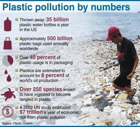 The Great Pacific Garbage Patch has increased by 100 times over the past 40 years