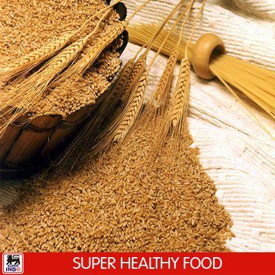 Pada saat puasa nanti, pilih makanan yang kaya akan serat seperti roti gandum untuk sahur. Dengan mengonsumsi makanan yang berserat, SIS akan jadi lebih berenergi.