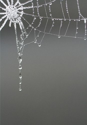 Would be beautiful done in glass seed beads and larger glass beads for the accents.
