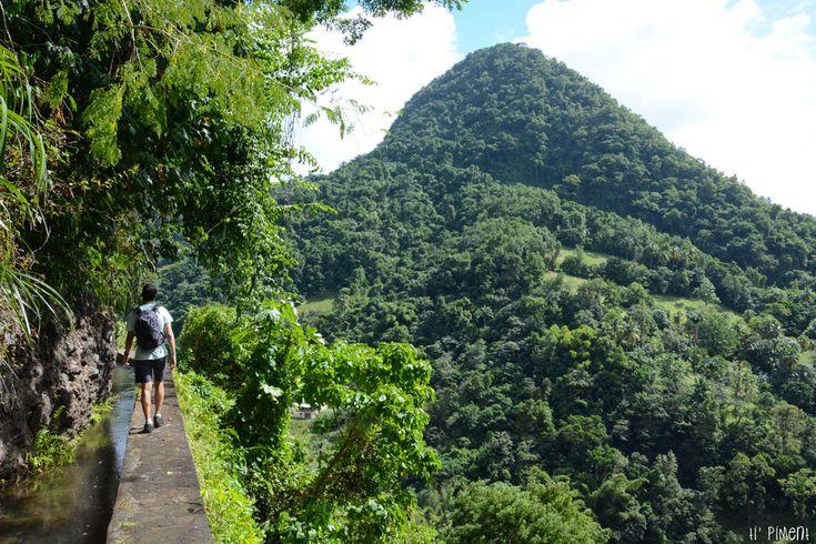 Randonnée sur le Canal de Beauregard - Martinique