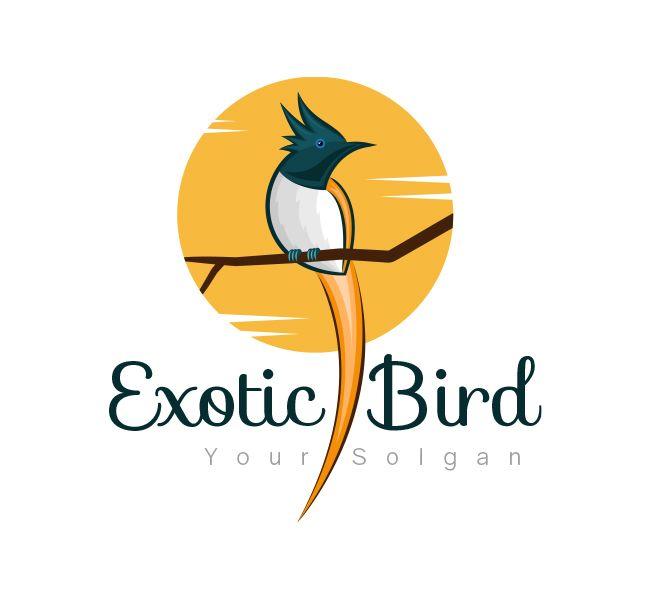 Exotic Bird #Logo Design for Startups | Design Shop | Bird logos