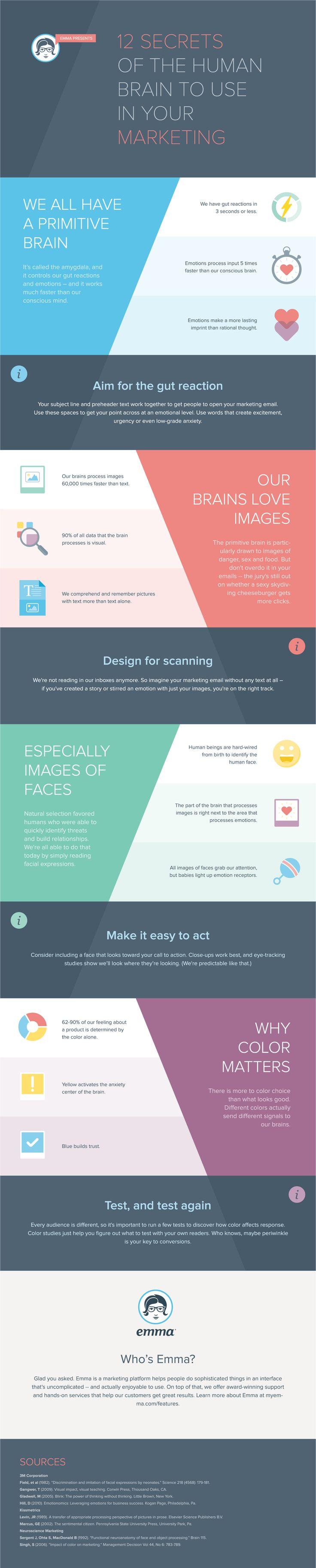 12 Secrets Of The Human Brain To Use In Your Marketing #DigitalMarketing #Marketing #Infographic