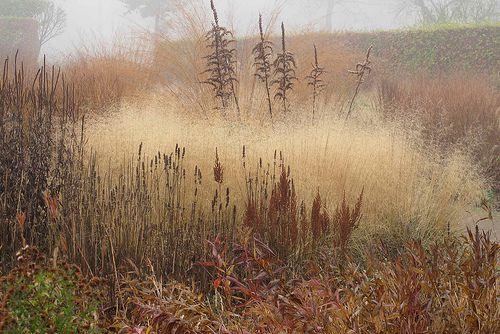 oudolf private garden   Flickr - Photo Sharing!
