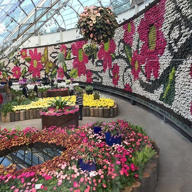 All About Flowers, exhibition, The Calyx, Royal Botanic Garden, Sydney