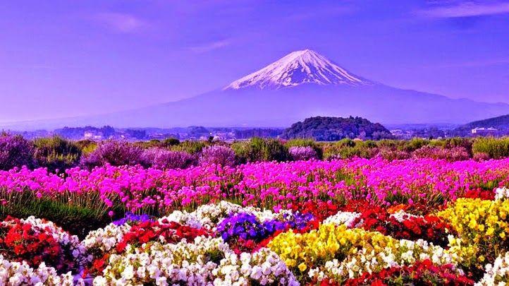 Uma montanha mágica para nos trazer côr ao dia!!! Google+