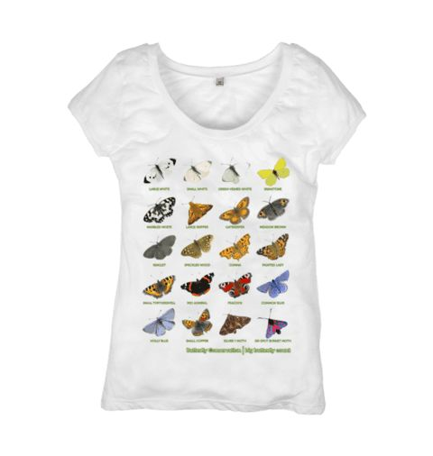 Big Butterfly Count Top