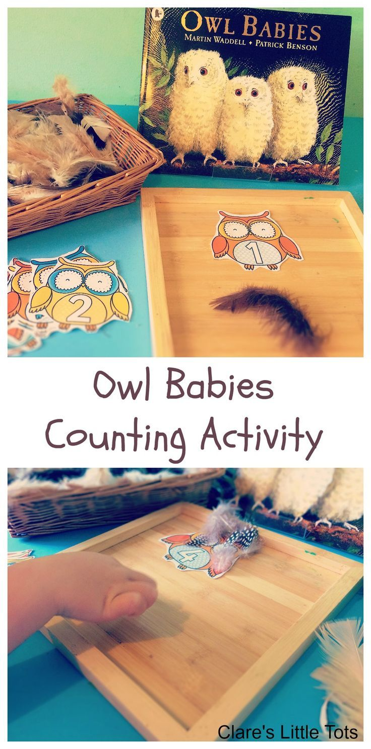 Owl Babies counting activity, simple maths idea for preschoolers based on the book Owl Babies.