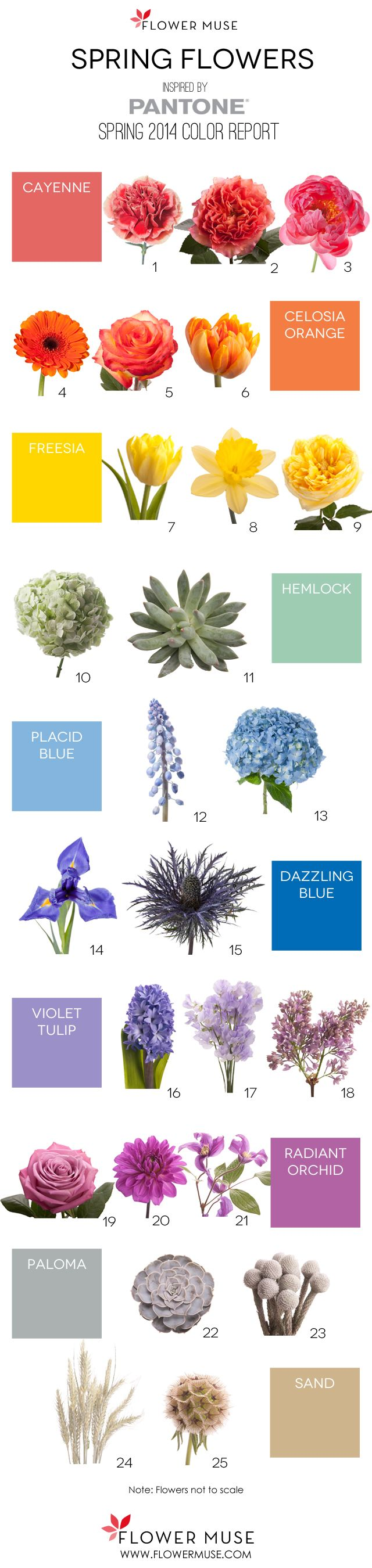 We share our picks of Spring flowers as inspired by Pantone's 2014 Spring Color Report. Get ideas for your wedding or event with this Spring inspiration!