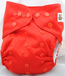 A baby cloth diaper has various advantages especially the fact that it can be recycled after washing. For more info just click here http://www.babybeduga.com/