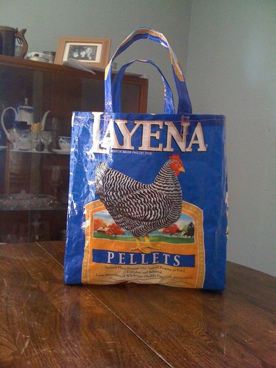 how to make recycled bags out of plastic bags