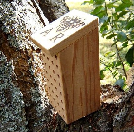Mason bee house.  Maybe use an old knife block?