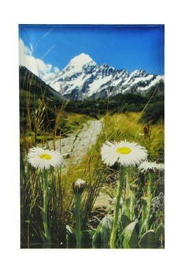 Aoraki/Mt Cook Art Block Artearoa | Shop New Zealand NZ$ 43.90