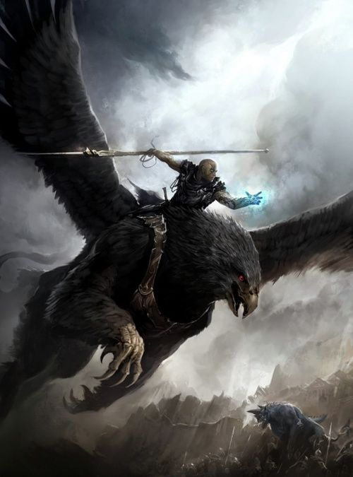 "*Clyder ""Skyfall"", human, battlemage and sky rider, spear specialist. Riding the griffon *Vesburyo."