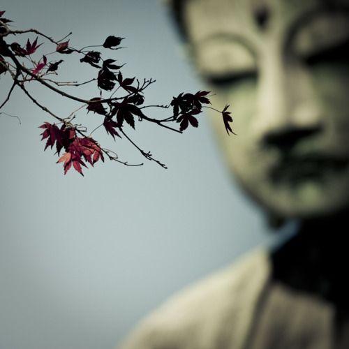 Zen---