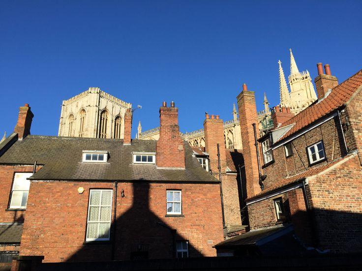 York Minster hides