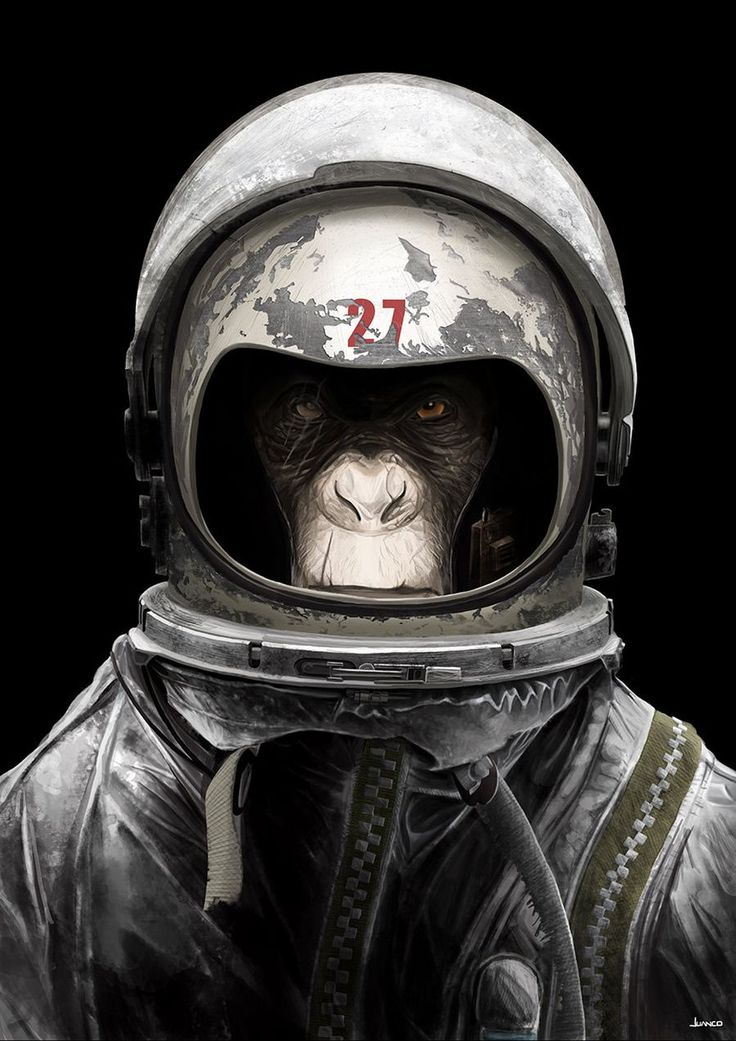 monkey astronaut movie - photo #43