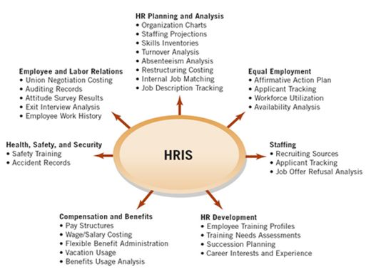 How Employee Management Software Improves Performance Evaluation
