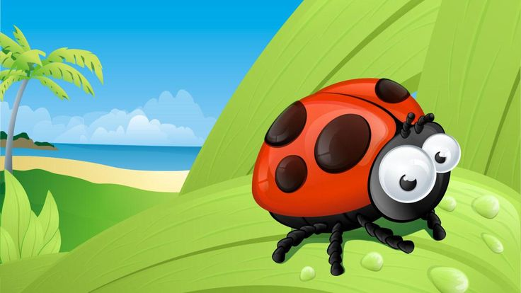 ladybug desktop background - Google Search