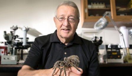 Medicine for possible muscle degeneration found in spider venom