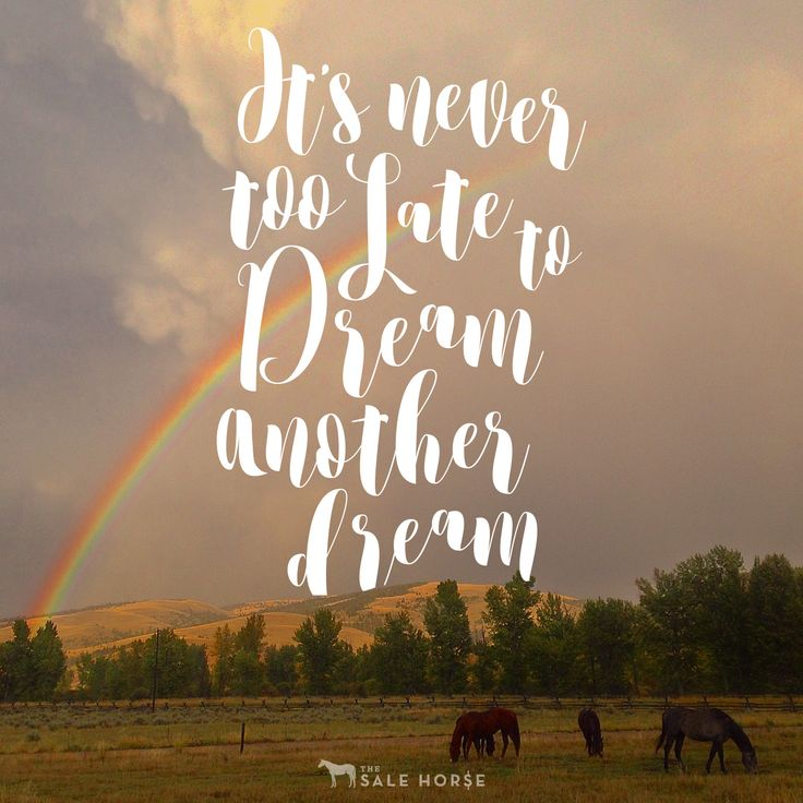17 Inspirational Horse Quotes & Resolutions for 2017 - 17 Inspirational Horse Quotes & Resolutions for 2017 - This New Year are you thinking about becoming a goal crushing, dream chasing, milestone making BAMF? You totally should and totally can.