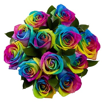 (62) Fab.com   Rainbow Roses 1 Dozen