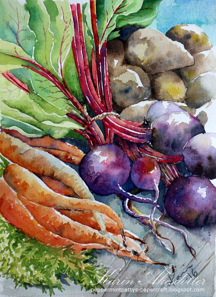 Doodlewash - watercolor painting by Karin Åkesdotter of vegetables