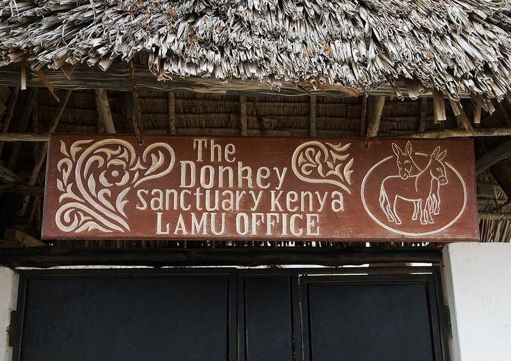 https://flic.kr/p/EguTjF   A sign for the the donkey sanctuary, Lamu County, Lamu Town, Kenya   © Eric Lafforgue www.ericlafforgue.com
